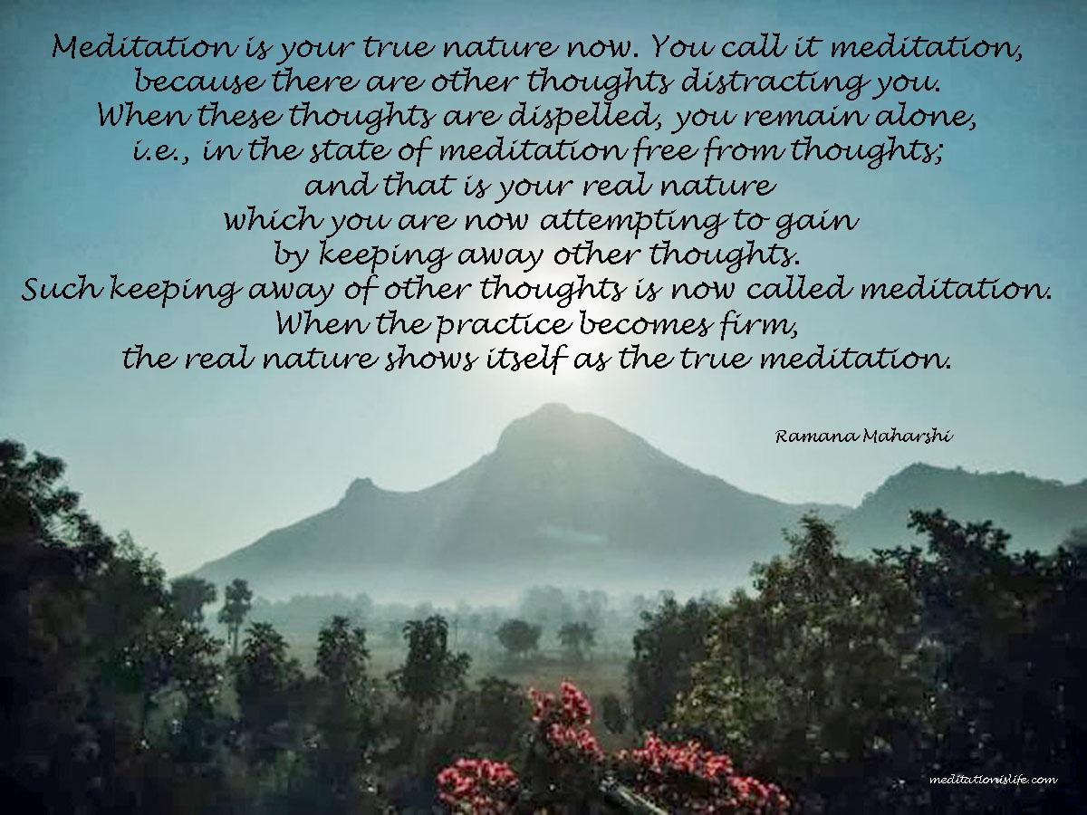 Meditation is Life