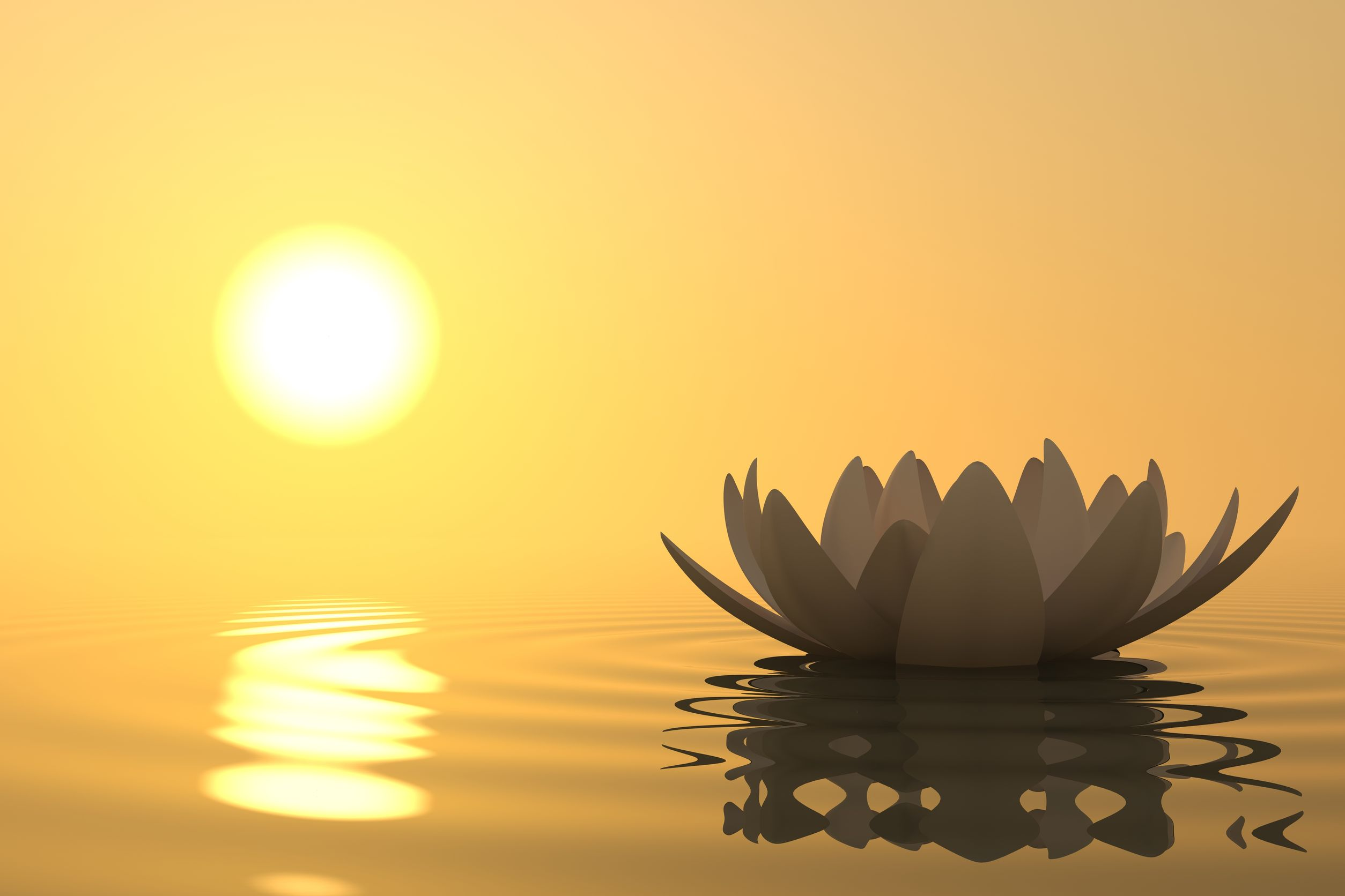 Meditation Theory and Practice
